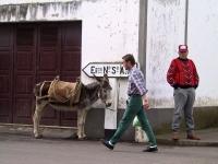 18023_Terceira
