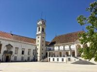 cortile università