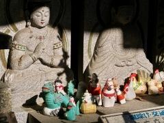 buddha  amici