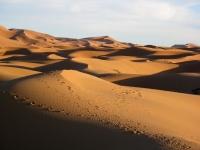 dune deserto